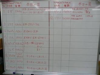 P1380980